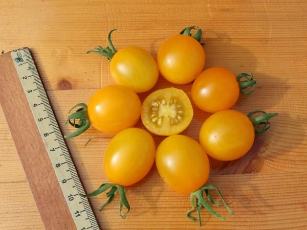 tomate cerise 10 bio samen biobewusst gartenshop. Black Bedroom Furniture Sets. Home Design Ideas